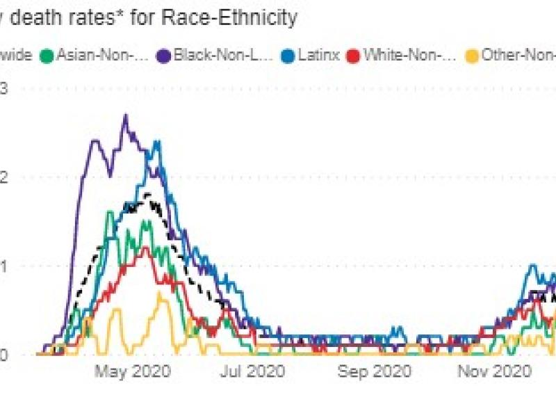 "Figure 1. Daily death rates* for Race-Ethnicity. Adapted from ""COVID Dashboard"